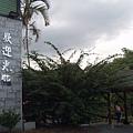 033_花蓮糖廠