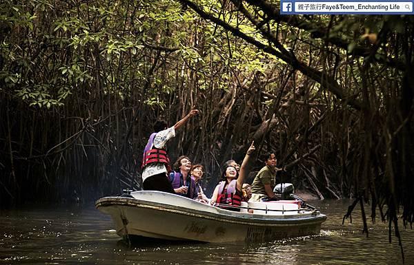 mangrove_river_safari_tour-1340338471-202-d_pic