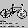 KNS-004-白仔