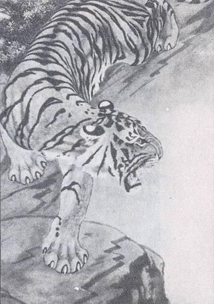 虎豹獅象C19801.jpg