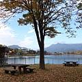 河口湖 (55).JPG