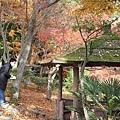 123 日本京都