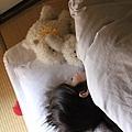 一大早趴趴走 回到房間看到溫暖的棉被還是想再躺一下XD