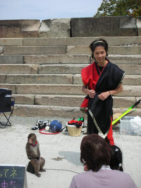 出來賣藝的猴子.jpg