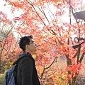 1129 日本東福寺