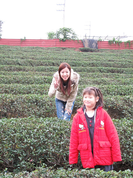 20091226_舅的店-山外山蔬食餐廳_000.jpg