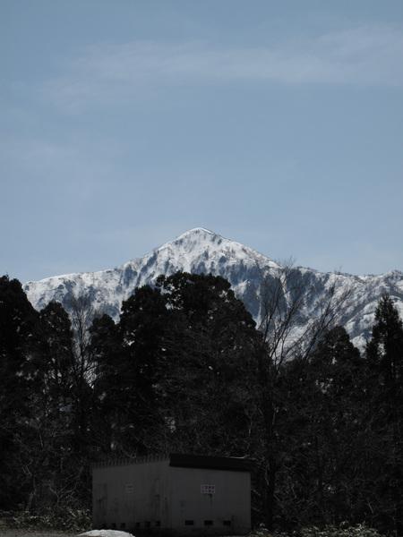 一出美女平看到白雪皚皚的山就好開心.jpg