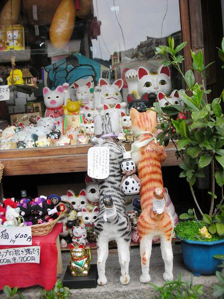 有名的賣貓咪東西的店.jpg