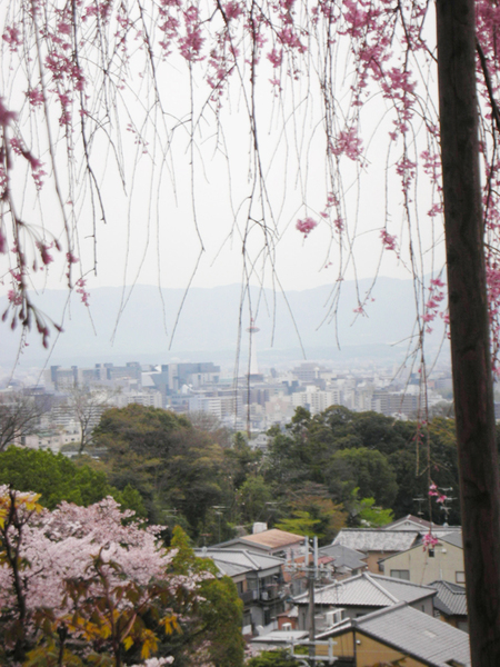 可以看到京都塔喔.jpg