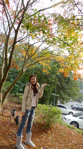 20091229_陽明山_022.jpg