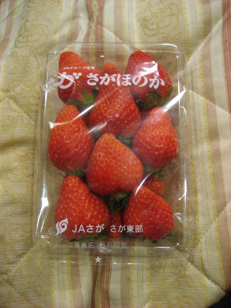 又大又好吃的草莓.jpg