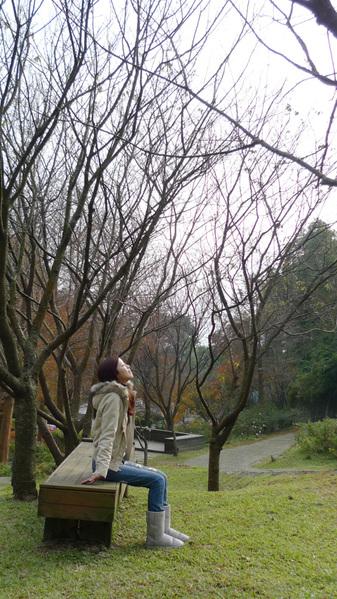 20091229_陽明山_020.jpg