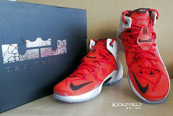 """LeBron XII """"HRT of a Lion"""""""
