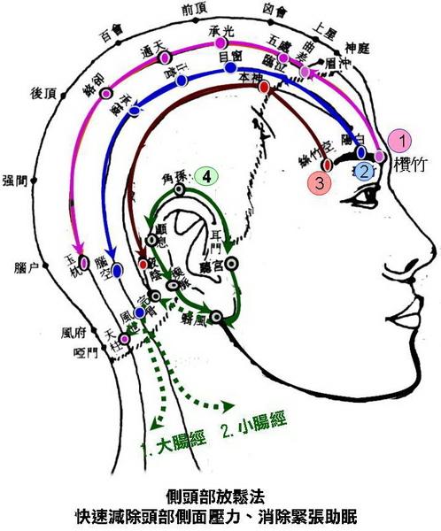 側頭部放鬆4條路線-1