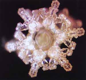 善的訊息可以產生美麗的水結晶.jpg