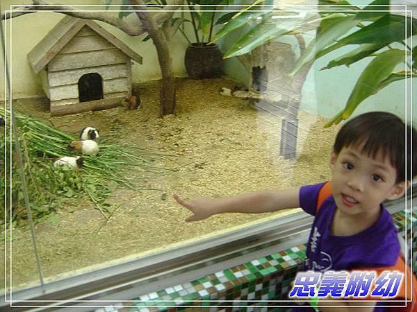 動物園戶外教學 (4).jpg