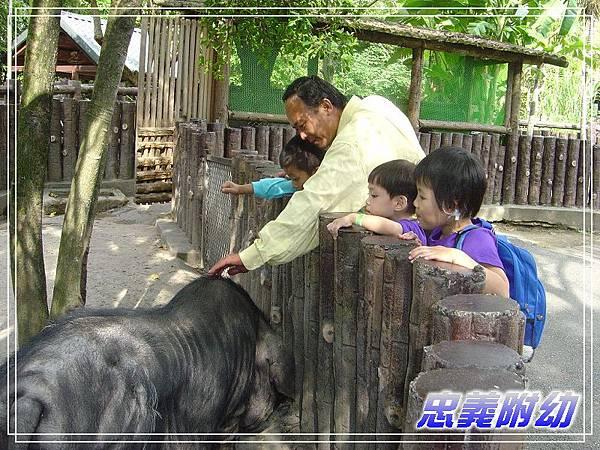 動物園戶外教學 (7).jpg