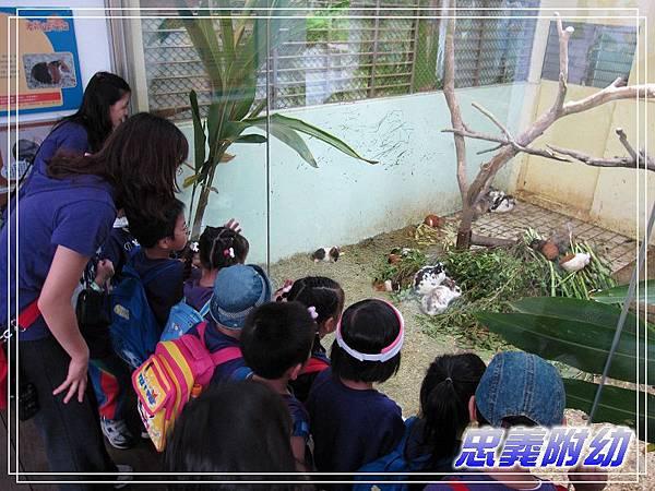 動物園戶外教學 (14).jpg