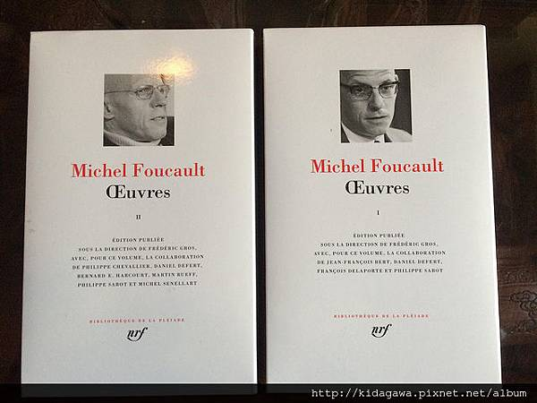 Michel Foucault .jpg2