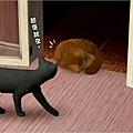 cat17