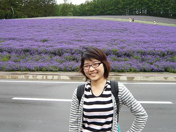 後面這片更紫了  到處都充滿著濃濃的薰衣草香味