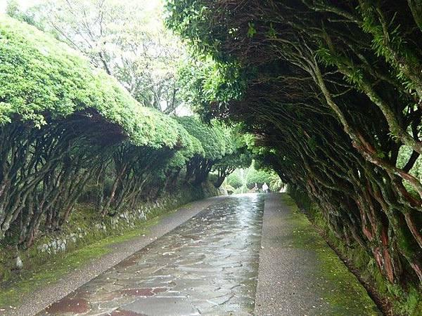天雨路滑,尤其是下坡路
