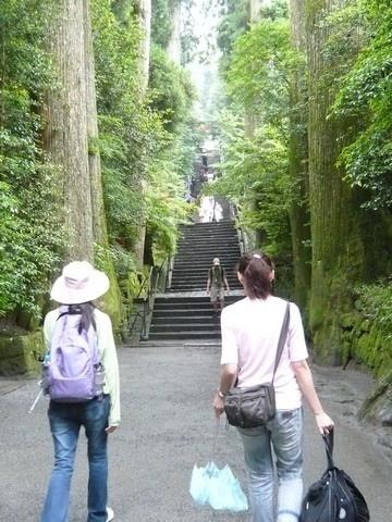 接著必須爬這麼一大段樓梯上去