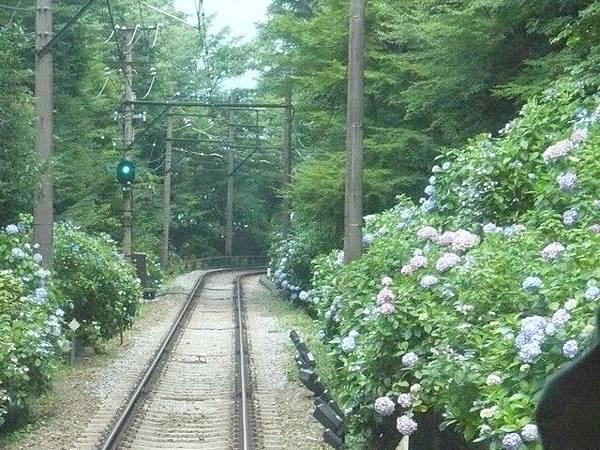 接著我們搭乘登山電車回箱根湯本