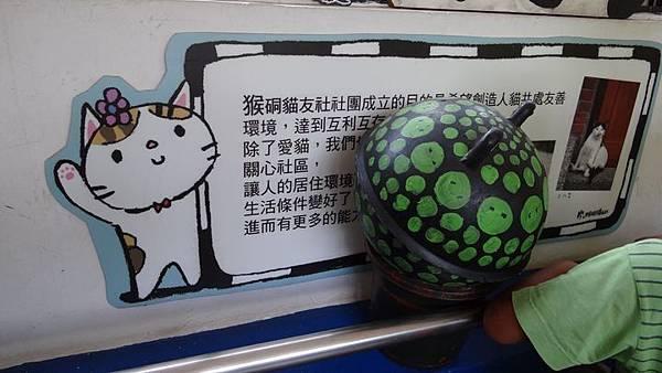 20180817 猴硐貓村 005.JPG