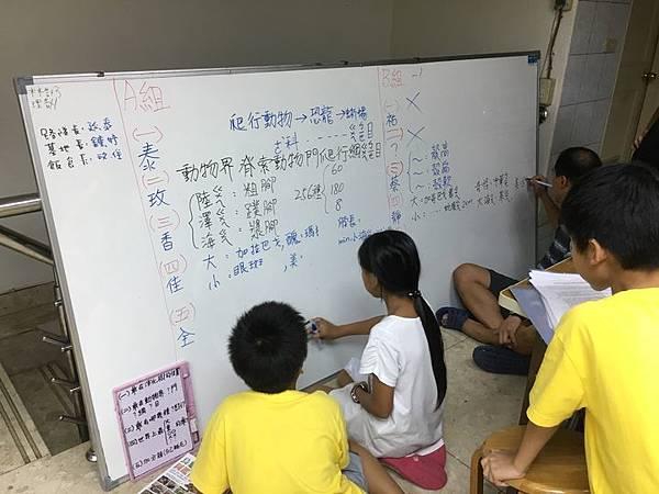 20180907 分組報告與詳細認識烏龜分類 010.jpg