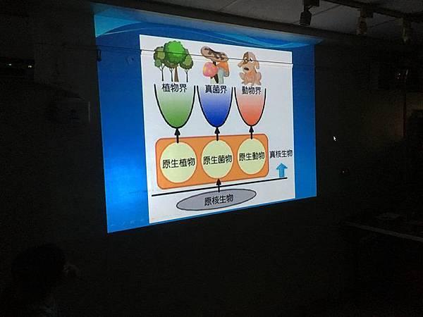 20180907 分組報告與詳細認識烏龜分類 015.jpg