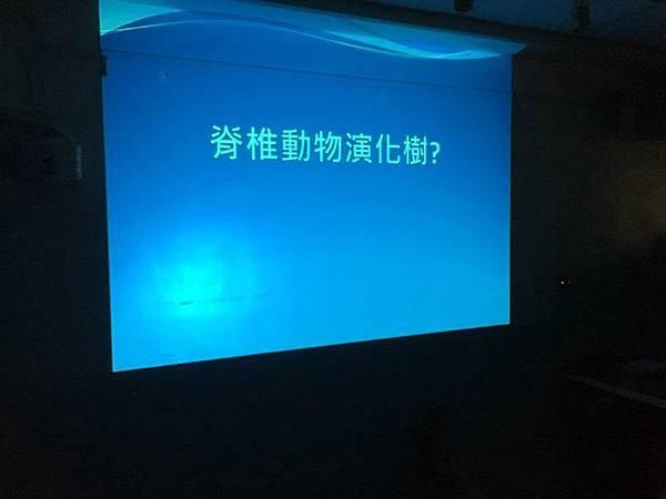 20180907 分組報告與詳細認識烏龜分類 026.jpg