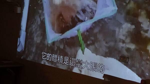 20181005 台灣本土龜鱉介紹與龜類健康狀況處置 048.JPG