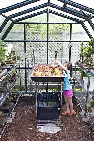 garden_greenhouse-5626(pp_w751_h1126).jpg