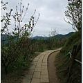 20110305杏花林 (22)