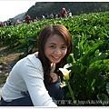 20110320陽明山 (8)