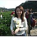 20110320陽明山 (9)
