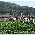 20110320陽明山 (18)