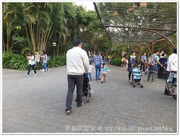 20131026 動物園 (1)