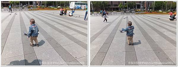 20140323 紙貓熊 (31).jpg