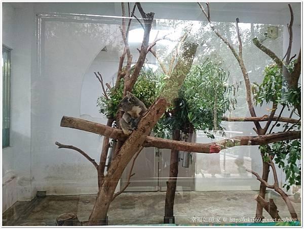20150501動物園 (6).JPG
