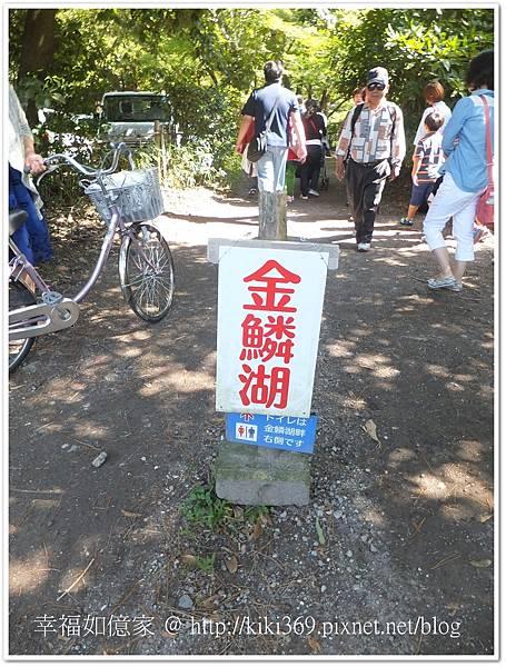 九州DAY2-2 (3).jpg