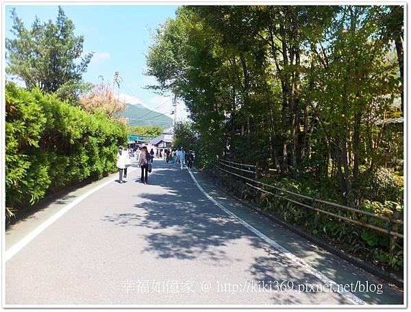 九州DAY2-2 (34).jpg