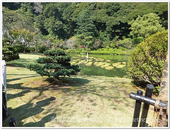 九州DAY2-3 (5).jpg