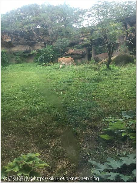 1071208  動物園 (19).JPG