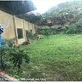 1071208  動物園 (20).JPG