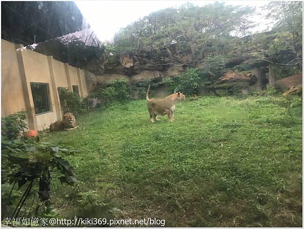 1071208  動物園 (22).JPG