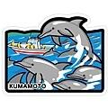 KUMAMOTO熊本-野生海豚.jpg