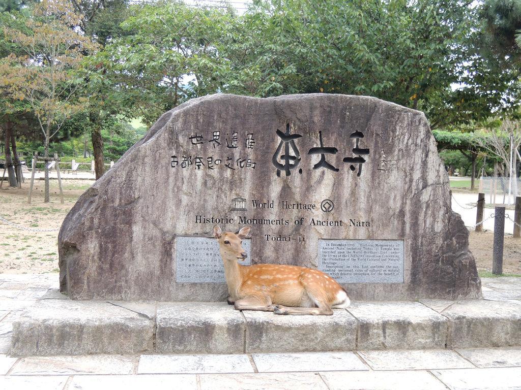 120830-311-奈良東大寺