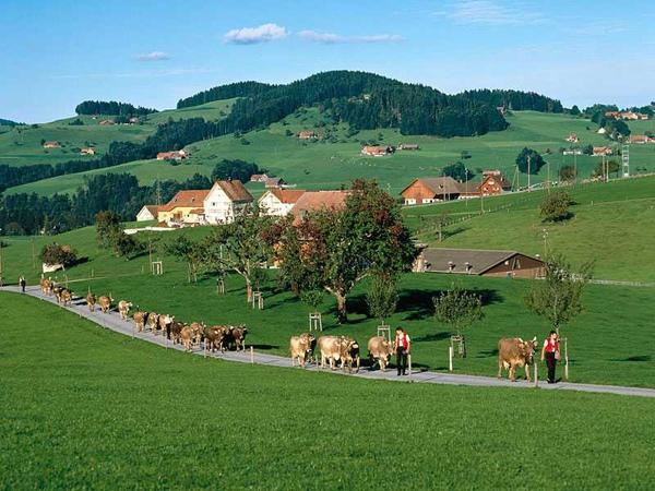 09瑞士-1.jpg